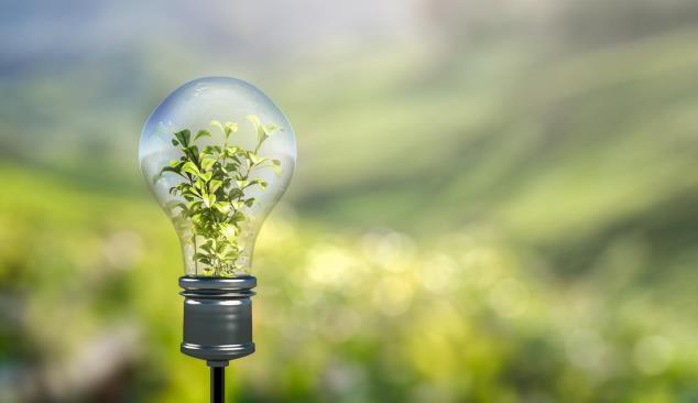 """CONVERSA """"Economia Circular & Sustentabilidade"""""""